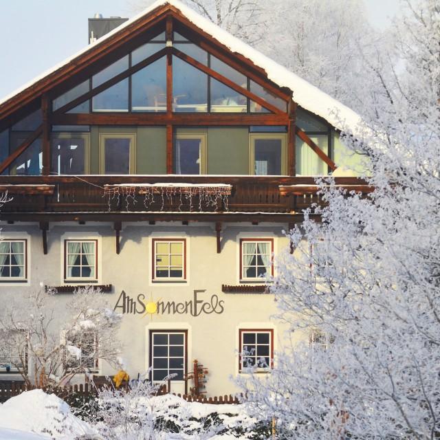 Das Alpine Herz